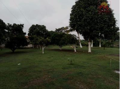 Chácara Rural À Venda, Marabaixo, Macapá. - Te0075