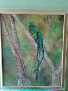 Preciosos Cuadros Oleo Quetzal