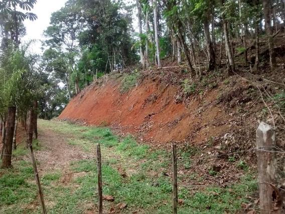 Terreno Em Jardim Alvorada, Miracatu/sp De 0m² À Venda Por R$ 95.000,00 - Te447217
