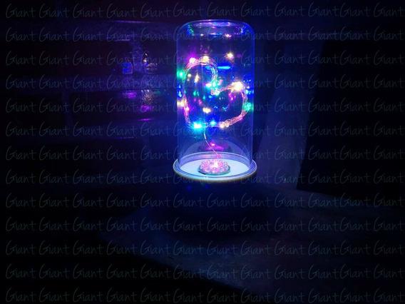6 Cúpula Encantada Redoma Luminária Led Coração Pilha Color