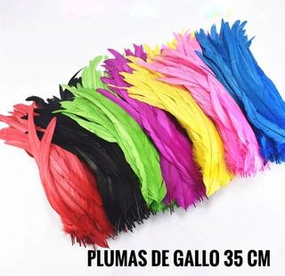 100 Plumas Gallo 35 Cm