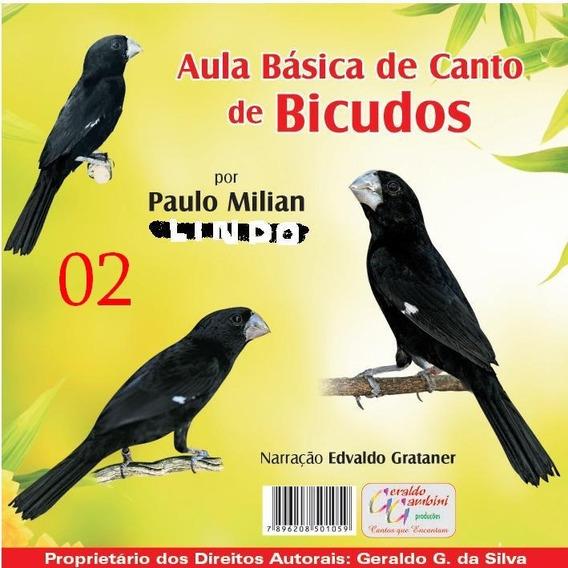 Cd Pássaros: Aula Básica De Canto De Bicudos