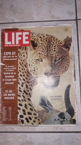 Revista Life En Espanol 5 De Junio De 1967
