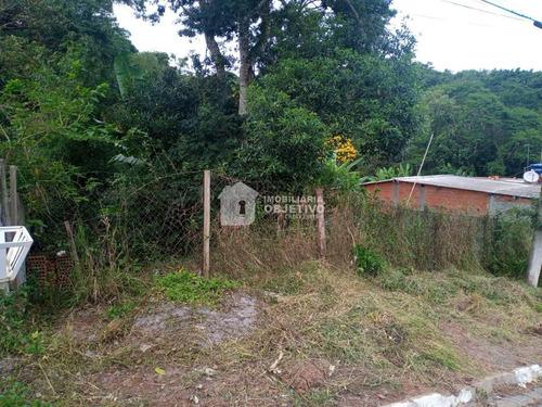 Imagem 1 de 2 de Terreno, Jardim Monte Verde (caucaia Do Alto), Cotia - R$ 90 Mil, Cod: 4091 - V4091