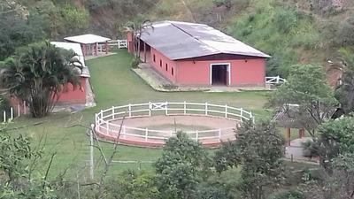Rural Para Venda, 9 Dormitórios, Javary - Miguel Pereira - 2398