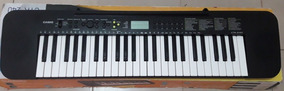 Electronic Keyboard. Casio. Teclado Electrico.