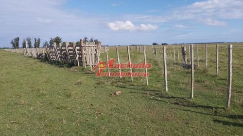 Chacra Ubicada En El Caracol- Ref: 6482