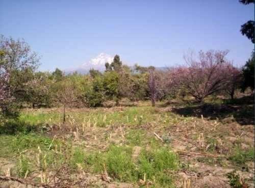 Cuautla Corredor Ecoturístico Terreno Plano 45,742 M2 Km75.5