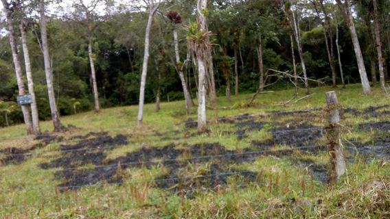 Vendo Terreno Em Itanhaém 2 Lotes 35 Mil Cada Um
