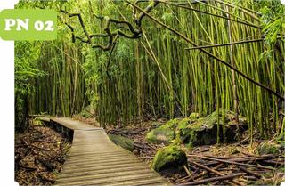 Adesivo Natureza Jardim Paisagem Bambu Por Do Sol Trigo Cristo Redentor Rio De Janeiro Floresta 4m² 2,00 A X 2,00 L
