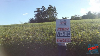 Chácaras/sítios/fazendas Para Venda - 13650.4036