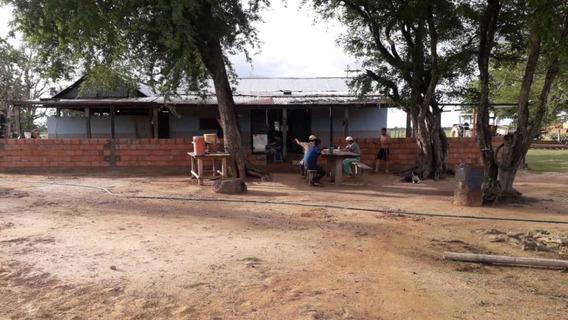 Hato, Hacienda, Finca En Guasdualito Estado Apure