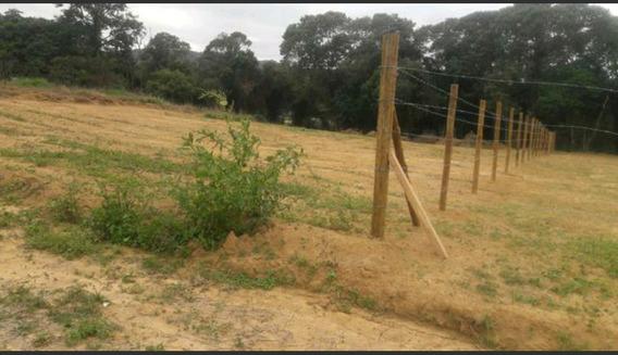 B Aceito Carro, Terreno 1.000 M2 100% Plaino C/ Portaria