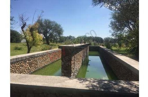 Granja Organica A Orillas Del Lago
