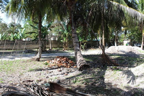 Imagen 1 de 18 de Terreno Con Construcción En La Localidad De Subteniente López