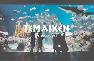 Cupon De Descuento 2x1 En Entradas Temaiken.