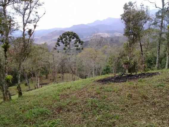 Terra No Vale Da Santa Clara Em Visconde De Mauá
