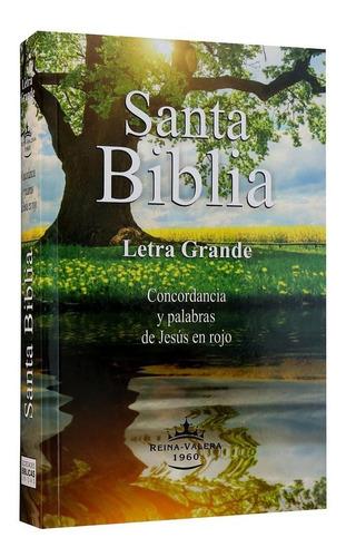 Biblia Letra Grande Palabras Jesús Rojo Reina Valera 1960
