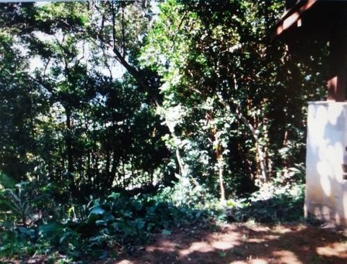Terreno Venda Caraguatatuba - Sp - Cocanha - 4123