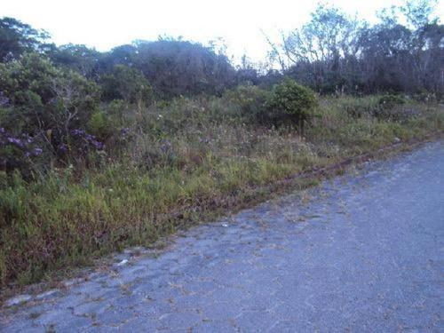 Imagem 1 de 7 de Bom Terreno Escriturado De 327 Mts Em Itanhaém - 0622   Npc