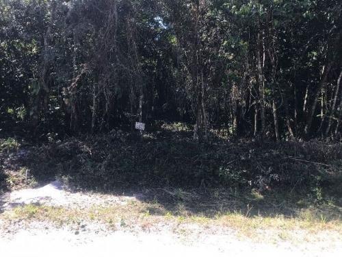 Terreno No Balneário Gaivota Lado Serra Em Itanhaém - 4028