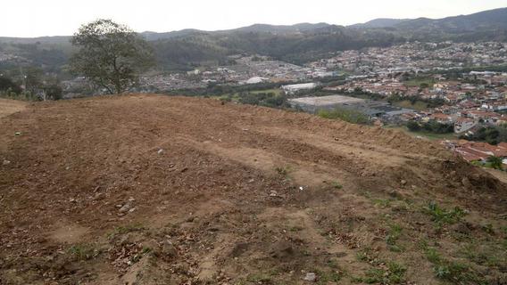 Terreno Em Amparo