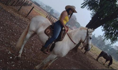 Cavalo Castrado Muito Manço Mangalarga Marchador