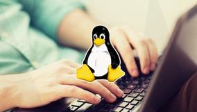 Aprendendo Terminal Linux Pondo A Mão Na Massa! Completo
