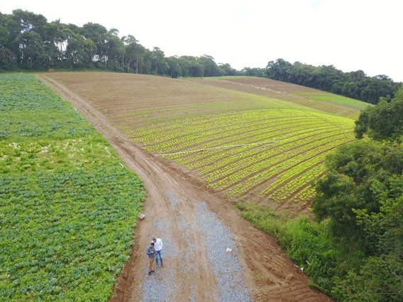 L. Terrenos,comércios Perto (ibiúna) Planos, Área Verde
