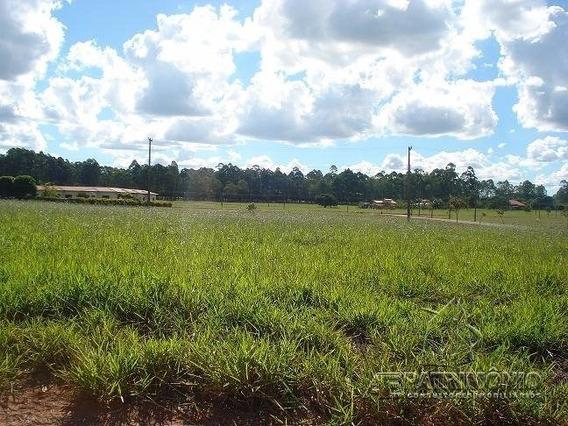 Terreno Condominio - Centro - Ref: 33061 - V-33061