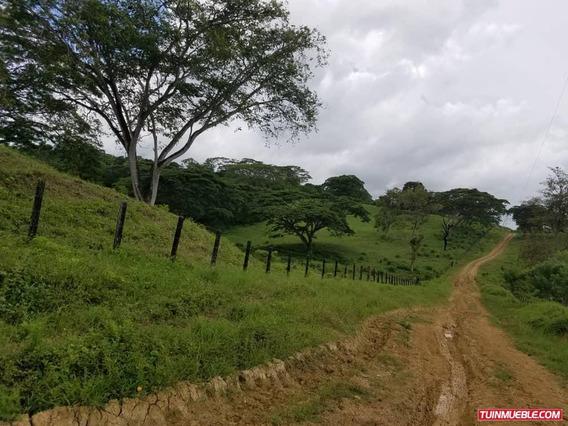 Haciendas - Fincas En Venta Yaracal, Cacique Manaure
