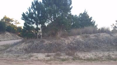 Terreno Alto En La Viuda Punta Del Diablo