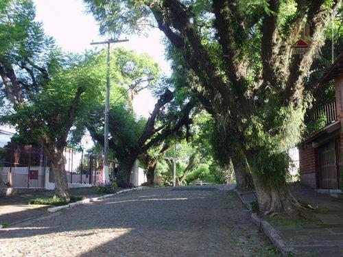 Imagem 1 de 2 de Terreno Residencial À Venda, Bairro Vila Ipiranga, Porto Alegre. - Te0100