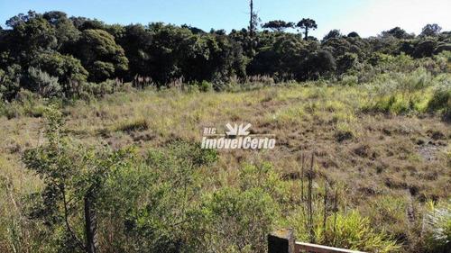 Imagem 1 de 21 de Área À Venda, 6500 M² Por R$ 3.575.000,00 - Cidade Industrial - Curitiba/pr - Ar0003
