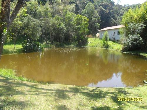 Imagem 1 de 14 de Excelente Chácara Com Piscina E Lago Cod: 4337