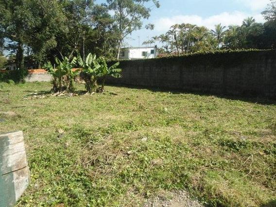 Terreno Residencial À Venda, Balneário Praia Do Pernambuco, Guarujá - Te0278. - Te0278