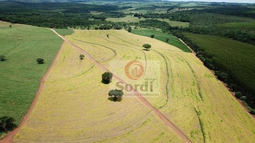 Sítio À Venda, 193600 M² Por R$ 1.600.000,00 - Zona Rural - Santo Antônio Da Alegria/sp - Si0093