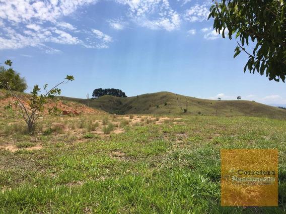 Terreno À Venda, 1300 M² Plano, Por R$ 150.000 - Bandeira Branca - Jacareí/sp - Te0431