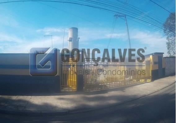 Venda Apartamento Sao Bernardo Do Campo Cooperativa Ref: 135 - 1033-1-135679