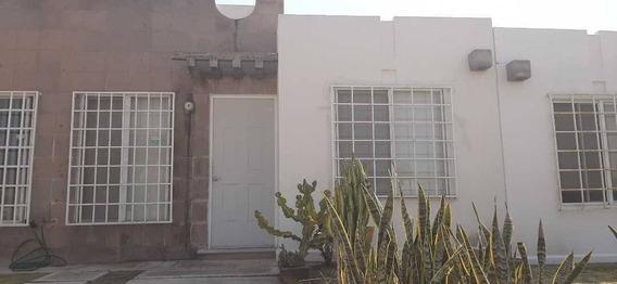 Departamento En Renta Condominio Pirul, Paseos Del Bosque