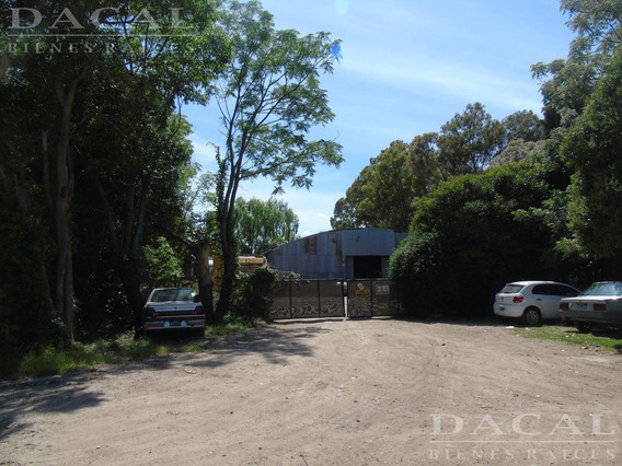 Depósito En Alquiler En La Plata Calle 133 E/ 511 Y 512 Dacal Bienes Raices