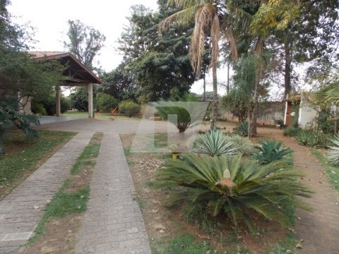 Chácara Dois Córregos - Ch00076 - 34405844