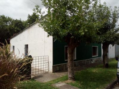Casa Y Local En Mismo Padrón Con Terreno Cercado Con Jardin