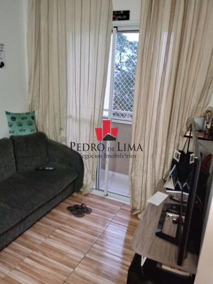 Apartamento De 2 Dormitórios E Sem Vaga, Em Cangaíba. - Pe29406