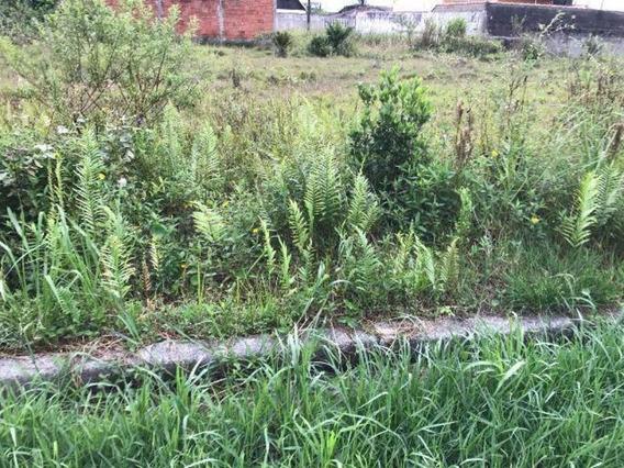 Venda De Terreno No Jardim Jamaica - Itanhaém 3918 | P.c.x