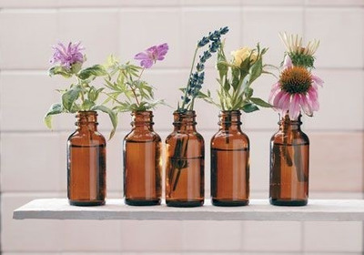 Consultorio Online Terapia Floral / Arteterapia / Otras