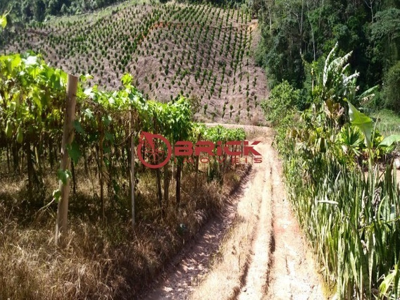 Sítio De 6 Alqueires Na Serra Do Capim, São José Do Vale Do Rio Preto/rj - St00065 - 33352048