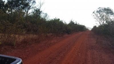 Fazenda Em Pindorama - To Agricultura E Pecuária 304 Alq. - 456