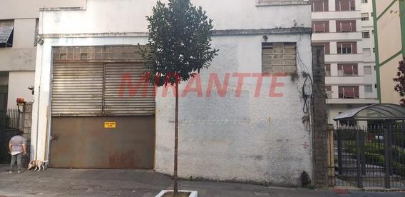 Terreno Em Santa Cecilia - São Paulo, Sp - 344686