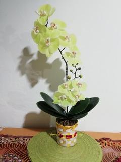 Arreglos De Orquideas Naturales Precio Hogar Muebles Y